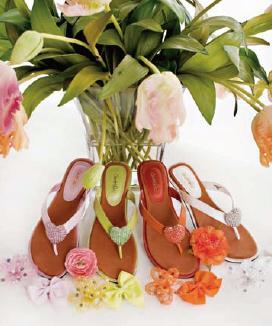 Jacqui S Shoe Boutique Coffs Harbour
